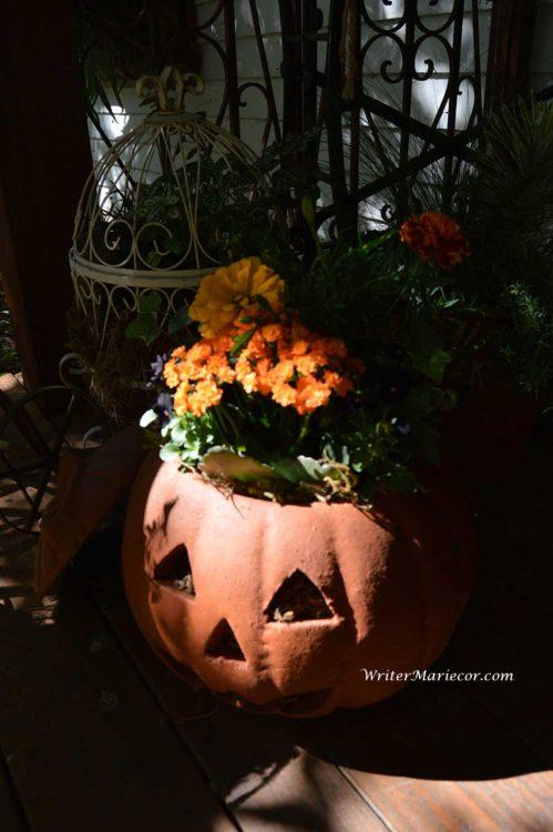 Pumpkins11