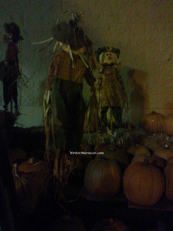 Pumpkins25