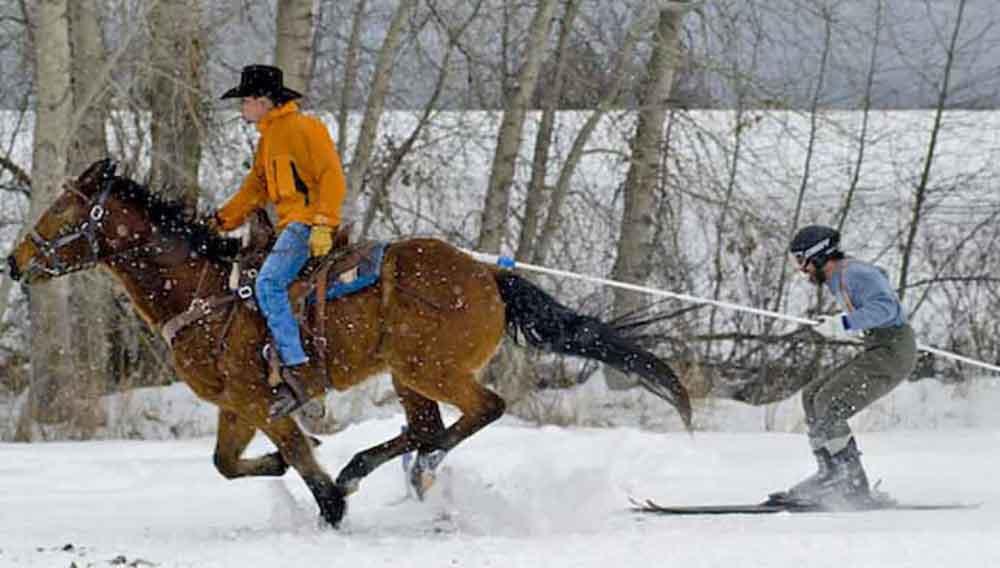 Ski-Joring-Montana-Writer-Mariecor