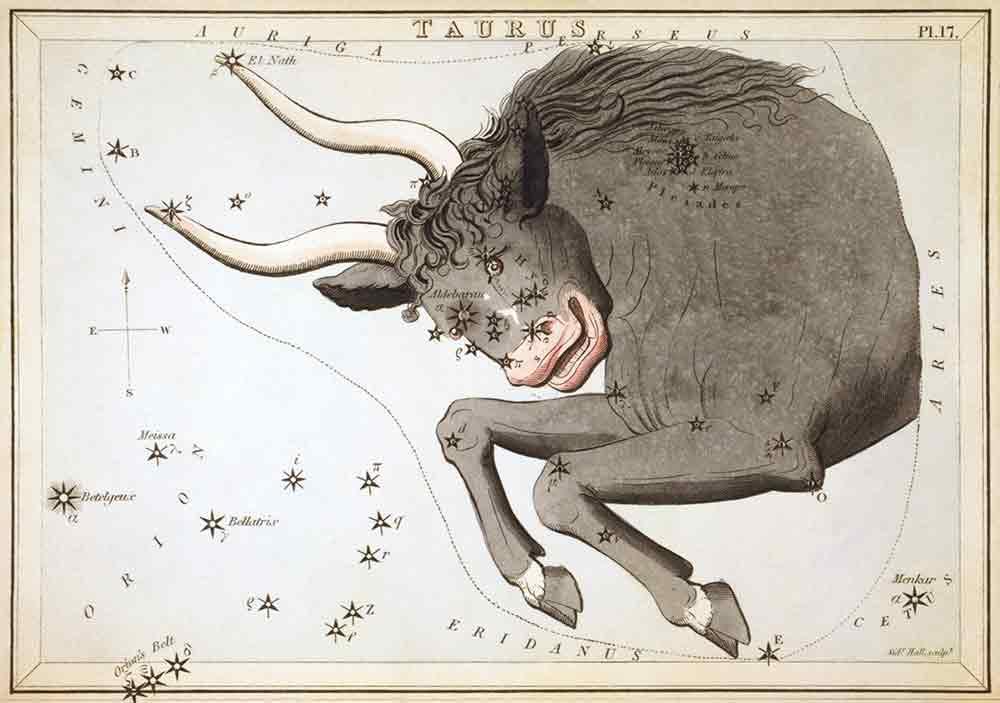 Taurus-the-Bull-I-Writer-Mariecor-I-WriterMariecor.com-1