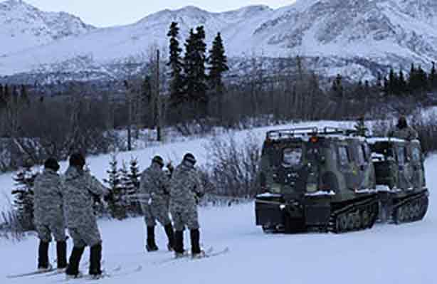 Military Arctic Training with Skijoring | Writer Mariecor | WriterMariecor.com