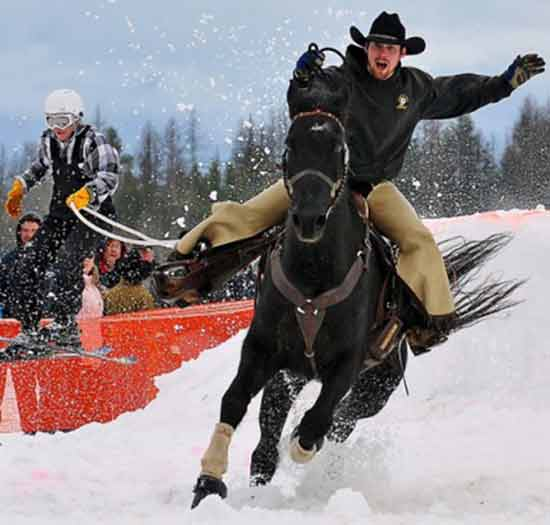 Skijoring Team with Cowboy pulling Skier | Writer Mariecor | WriterMariecor.com